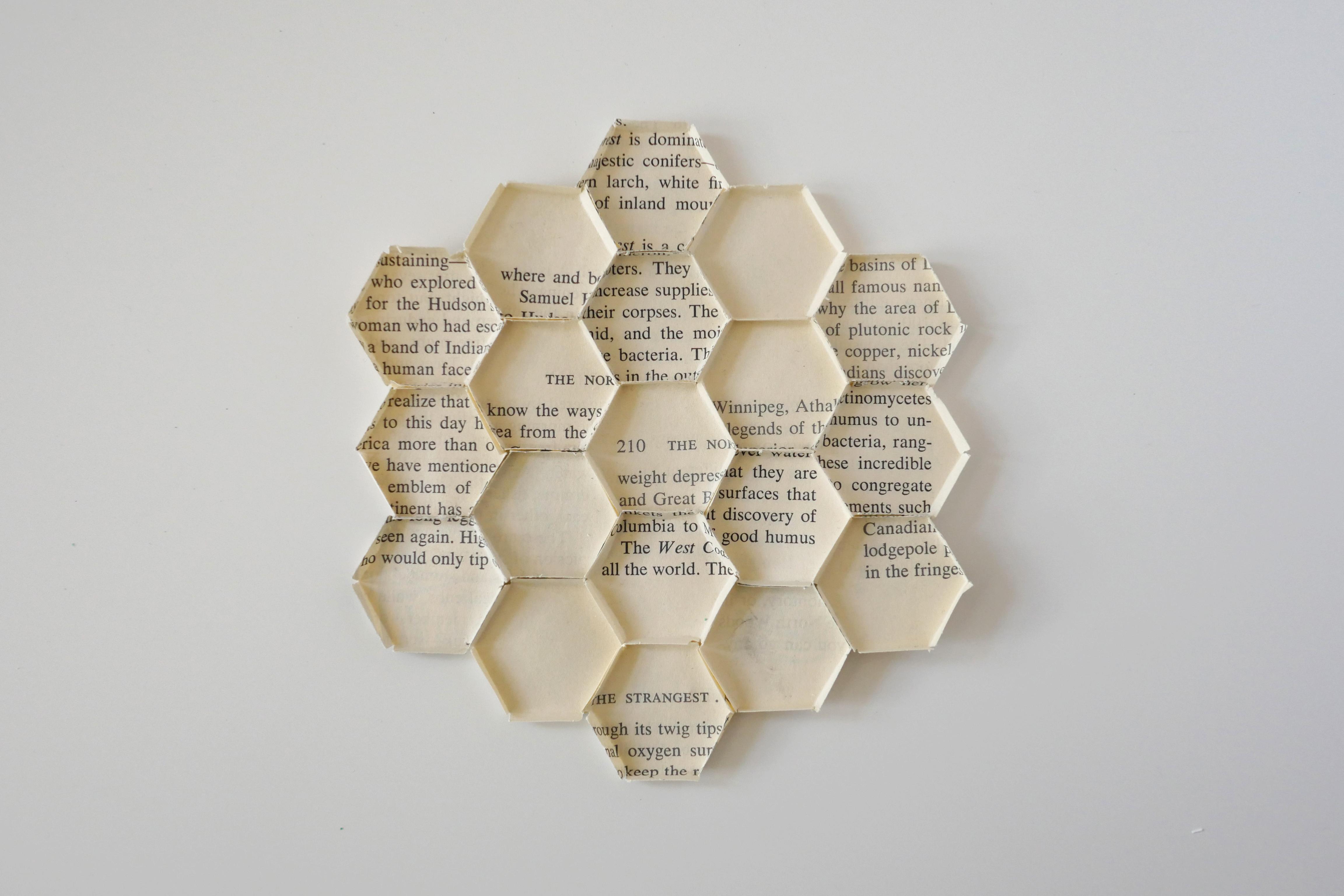 HoneyComb04