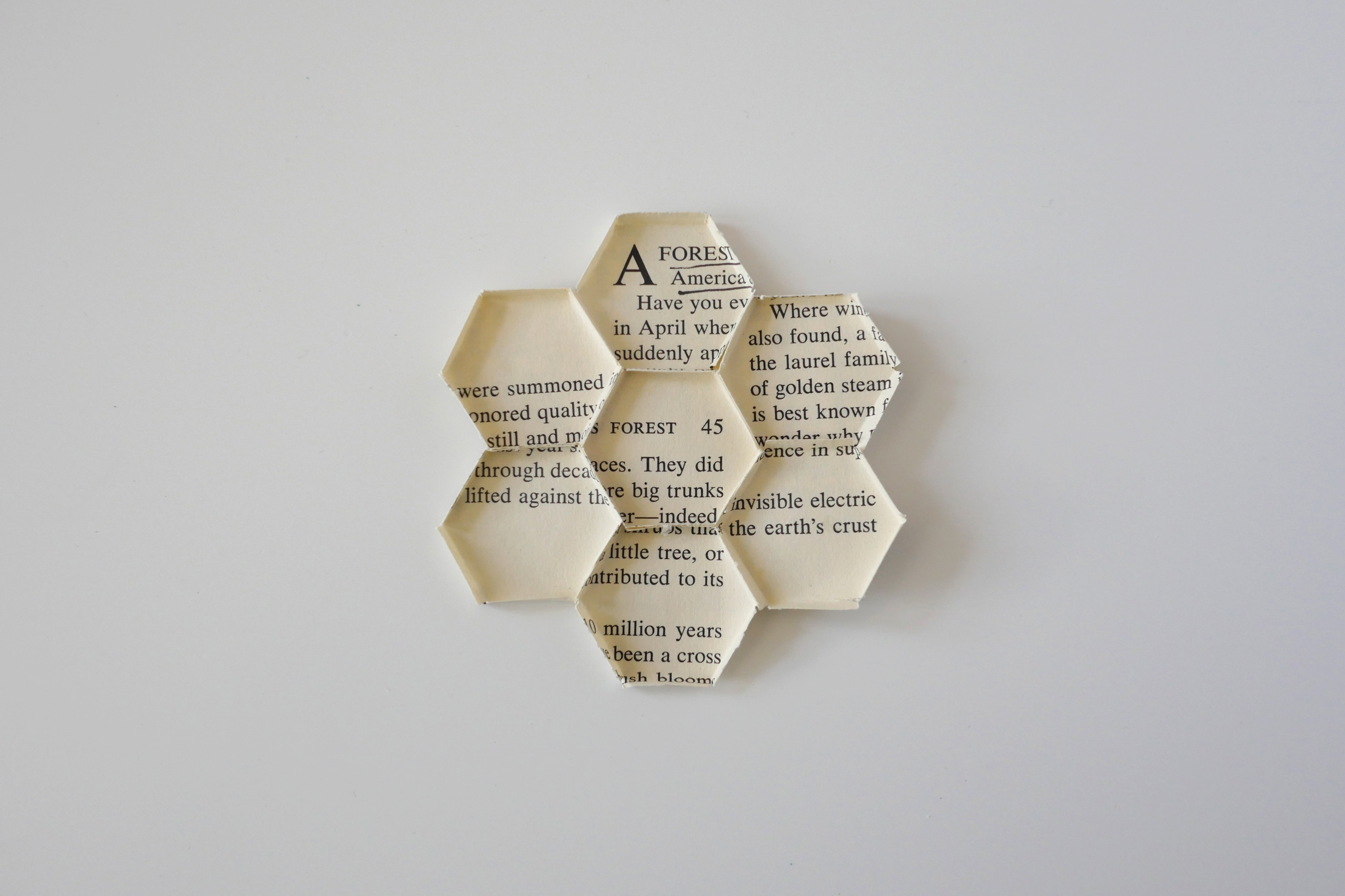 HoneyCome10